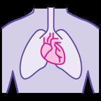 Herz-Kreislauf-Lösungen